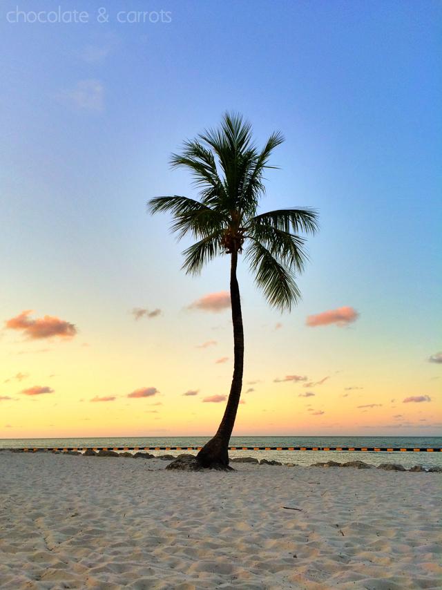 Tranquility Bay Beach Resort Sunrise | chocolateandcarrots.com