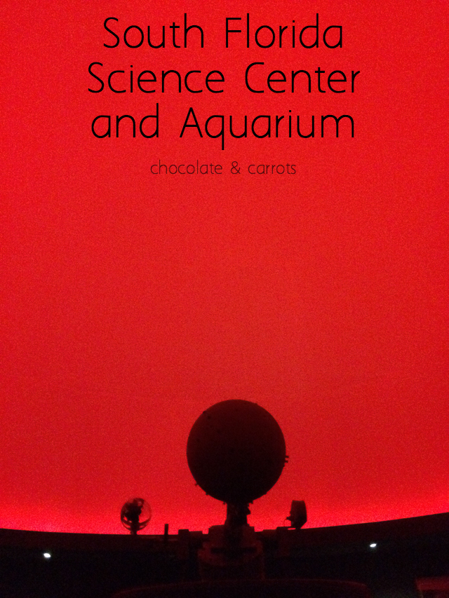 South Florida Science Center and Aquarium | chocolateandcarrots.com