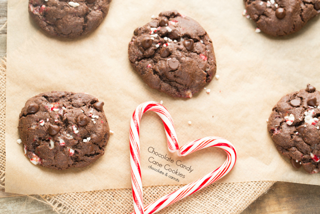 Chocolate Candy Cane Cookies | chocolateandcarrots.com