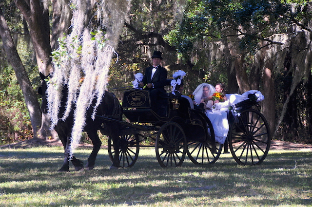 Carriage at my wedding | chocolateandcarrots.com