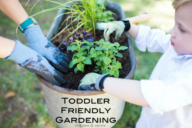 Toddler Friendly Gardening | chocolateandcarrots.com