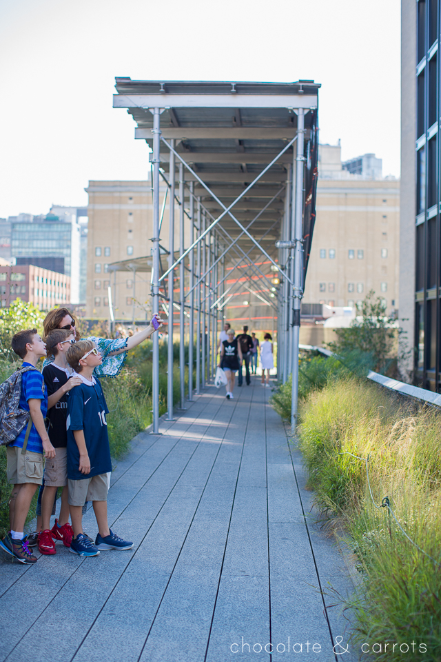 the-highline-in-new-york-city-chocolateandcarrots-com