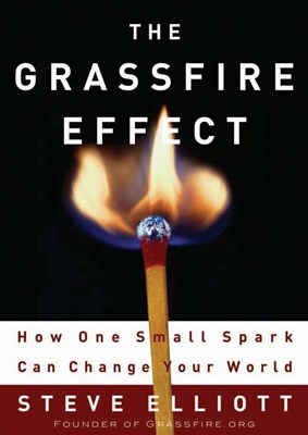 The Grassfire Effect (eBook)