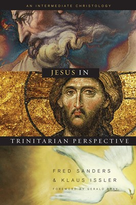 Jesus in Trinitarian Perspective (eBook)