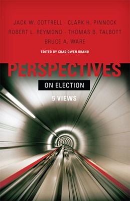 Perspectives on Election (eBook)