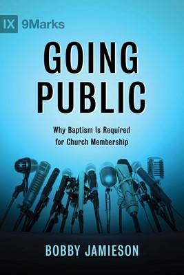 Going Public (eBook)