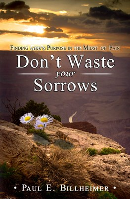 Don't Waste Your Sorrows (eBook)