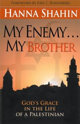 My Enemy . . . My Brother (eBook)