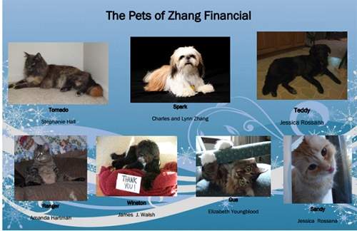 The Pets of Financial Advisor Office Image - Zhang Financial