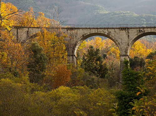 001-bridges