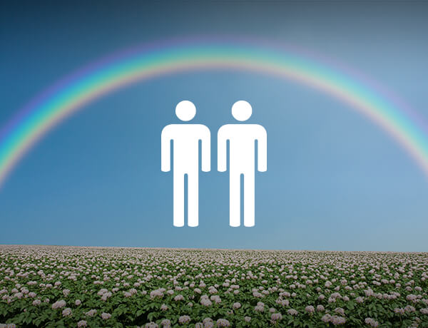 Financial Strategies in a Post-DOMA World