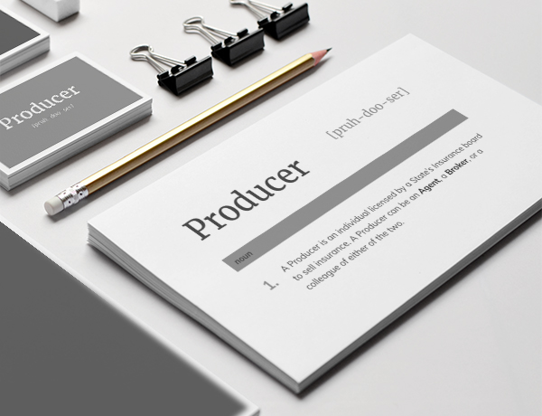 What is a Producer?