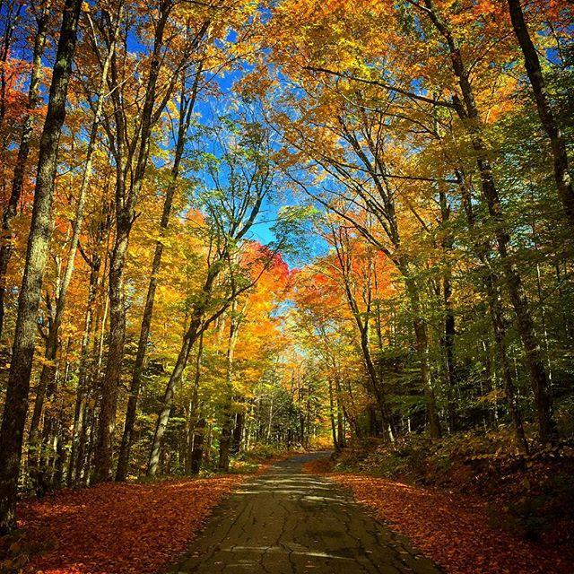 The Route Less Traveled For Fall Foliage In The White Mountains