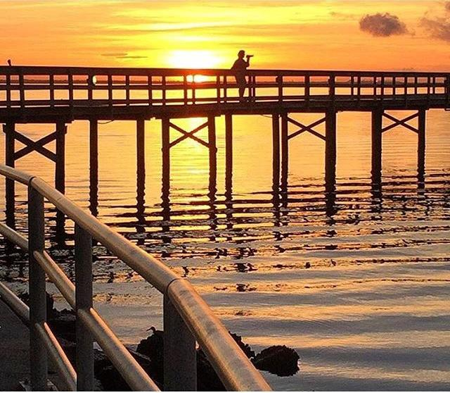 🌞 SUNRISE!! One of our favorite photographers, Ginny, caught this beautiful sunrise shot of another of our favorite photographers, Holly!! ☀️SAFETY HARBOR, FLORIDA, The Home of THE SAFETY HARBOR SONGFEST!!!🌴 Safety Harbor is a charming little town that knows how to Celebrate 🎸 MUSIC 🎤 AND THE ARTS!!! Join us in 2017 for THE SAFETY HARBOR SONGFEST! 🌺 Our music festival in Paradise!! (great 📷 @gin22hol !!! )  www.safetyharborsongfest.com #safetyharborsongfest #TampaBayTimes #safetyharbor #safetyharborfl #SHAMc #kiaralindatodd #tampabaylive #tampabay #unlocktampabay #ilovetampabay #ilovetheburg #vacfl #vspc #Cleargram #liveamplified #musicfestival 🌺 #musicinparadise #LoveFL #safetyharborpier #festival #livemusic #Florida #WeLoveOurArtists #letsdothatagain #ginhol #sunrise #safetyharborpier