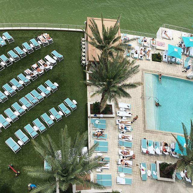 It's still summer and we are enjoying every moment of it!  #opalsands #opalsandsresort #clearwaterbeach #florida #poolparty #pool #palmtrees #theviewfromabove #cleargram #liveamplified #vspc #visitflorida #poolday #relax #vacation #vacationdestination #september #enjoy #☀️ #lounge #luxury #resort #instapool #instagood