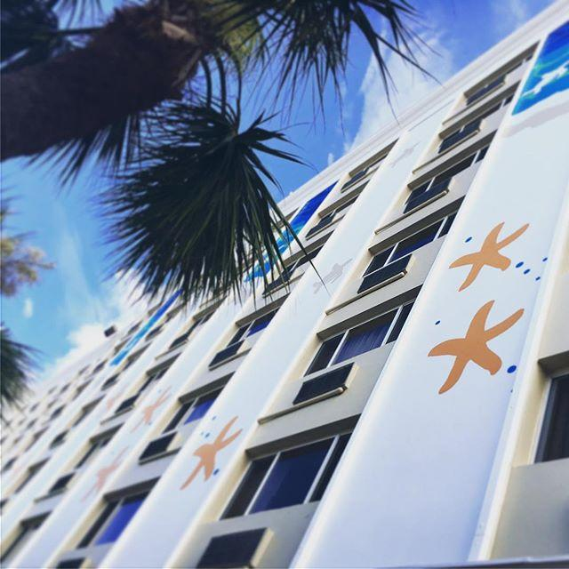 💫👀 We're seeing stars! . . . #twresorts #justletgo #liveamplified #lovefl #vacation #stpetebeach #igers #travel #picoftheday #mytwmemories #thebeachtoday #igersstpete #florida #☀️ #😎