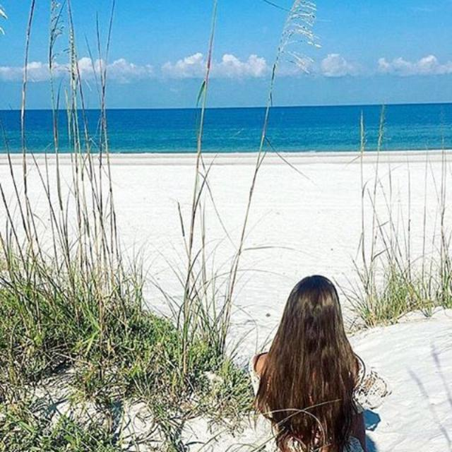 @rach_yates has the best seat in the burg 🌴 . . . . #theburg #stpete #stpetersburg #livelocal #liveamplified #igerstpete #igers #beach
