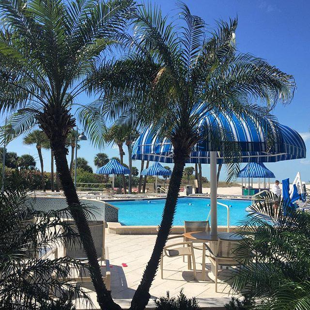 No need to Throwback to sunny pool days... they're happening right now!  #sandkey #poolday #sunny #tbt #beachside #ClearwaterBeach #LoveFL #LiveAmplified #cleargram @sheratonsandkey