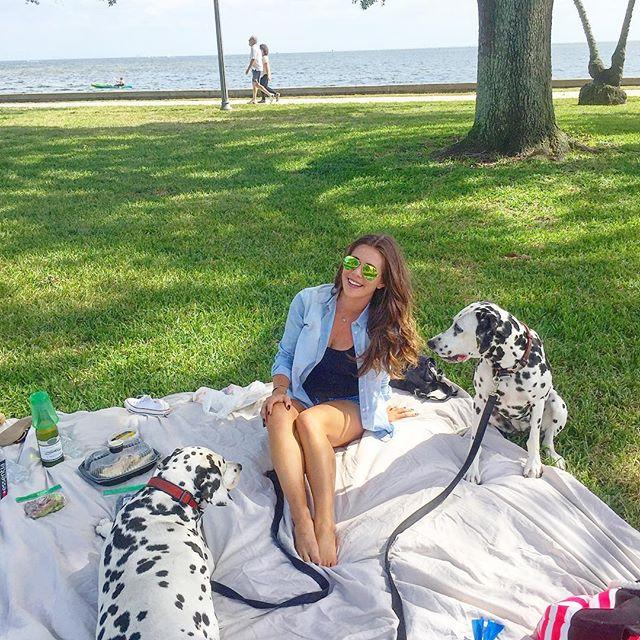 Perfect day for a picnic with my best friend and puppies in the park 🐶🍷😍🌴👌🏽#Florida #perfectsaturday #picnic #dalmatians #puppies #stpetersburg #downtownstpete #bff #raybans #converse #sauvignonblanc
