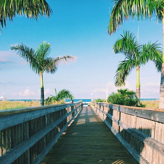 ☀️Road to paradise☀️ : : : : : : : : : : : #landscape #beach #beaches #horizon #palmtrees #florida #usa #travel #travels #traveling #traveler #vacation #wanderlust #instatravel #instapassport #travelphotography #photo #photography #bestoftheday #instapic #photooftheday