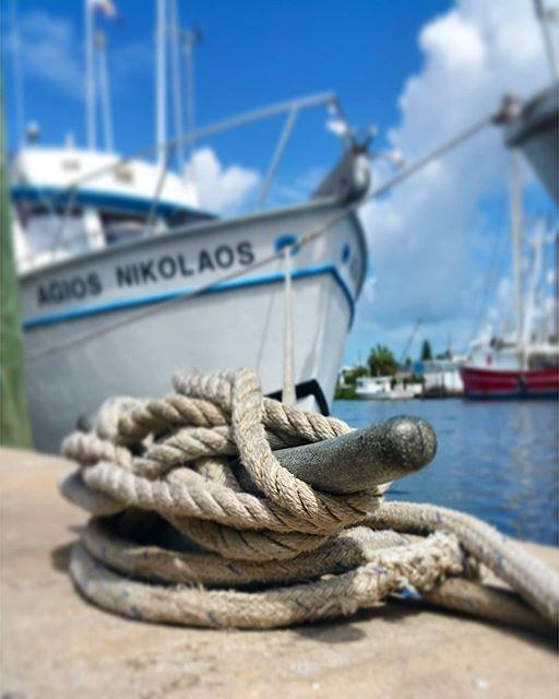 Fun times at the docks.  #docks #tarponsprings #rope #nautical #cleats #boat #boatsofinstagram #seaport #cleargram #igers_tampa #igersstpete #fun_in_florida #roamflorida #liveamplified #explorida #instagram_florida #samsungphoto #samsungphotography #samsungnote4 #perspective #perspective_in_focus