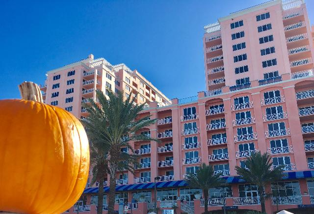 Trick or Treat Yourself to a getaway on Clearwater Beach! https://t.co/nzUiyBN0il