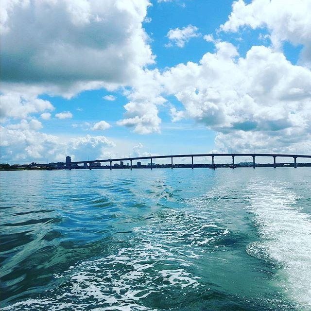 It was a beautiful day on the water looking for dolphins. #clearwaterbeach #littletoot