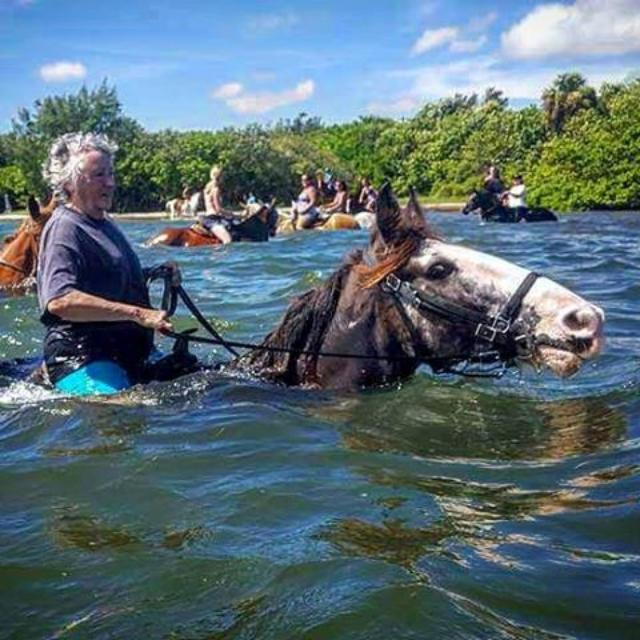 Come experience riding horses in the ocean visit CypressBreezeFarm.com to book your ride. Our location is by the skyway bridge #onceinalifetimeexperience #stpetersburgflorida #stpete #ilovestpete #iheartstpete #floridaoutdoors #visitstpetersburg #pinellasevents #pinellaspark #doncesar #horsevacation #explorestpetersburg #guyharvey #fortdesoto #tradewindsresort #stpetebeach #tourflorida #beachhorses #floridaoutdoors #tampabaytimes #tampabayfishing #baynews9