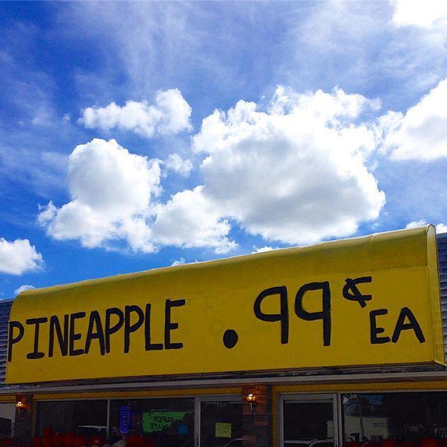 I got 99 problems but a pineapple ain't one....... . . . ___________________🍍 #Florida #PureFlorida #TPAUSA #roamflorida #LoveFL #visitflorida #fun_in_florida #upsideofflorida #hashtagflorida #florida_greatshots #instagram_florida #staysaltyflorida #igersflorida #igersstpete #staysalty #stpetebeach #clearwaterbeach #keywest #cleargram #ilivewhereyouvacation #endlesssummer #liveamplified #vspc #chasingthesun #islandlife #islandhopping #wanderlust #unlocktampabay #vitaminSEA #99problemsbutapineappleaintone