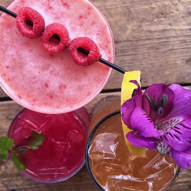 Don't these look gorgeous? If you want to #DrinkLocal, in honor of #Prince 👑, head over to @the_bends for their #PurpleRain ☔️ (tequila, beet, ginger syrup w/ grapefruit)! 🍹💜😋 👉 Find all our @keepstpetelocal members via the link in our bio👆  #keepstpetelocal #kspl #becauselocal #local #indie #localbar #cocktails #supportlocal #supportlocalbusiness #localbusiness #stpete #stpeterocks #ilovestpete #ilovetheburg #locallove #lovefl #loveyourcity #vspc #liveamplified #saturdaynight