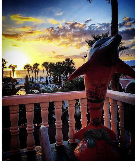 #Loews #doncesar #stpetebeach #cleargram #sunset #dolphin #liveamplified #lovefl #saltlife #pinkpalace #florida