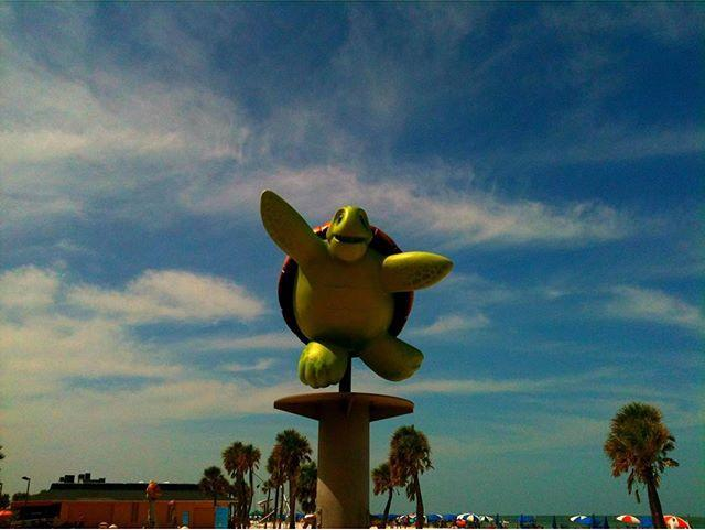 You on Friday 🐢 #Turtle #ThrowbackThursday | August 25, 2012 |  #digitaledit  #ocean #beach #summer #dreamy #florida #MoodyGrams #Cleargram #sunset #sunrise #beach #clouds #cloudy #travel  #driving #skies #birds #trees #love #nature #cute #beautiful #dreamy #magical #longboarding #fishing  no #nofilter #createdoniphone #greis316