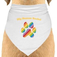 Dog Bandana rainbow blue