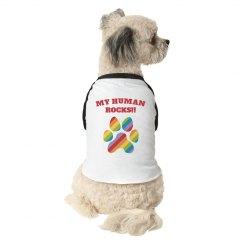 Dog Bandana rainbow hunter green