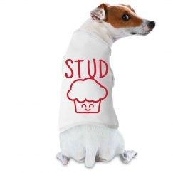 Stud Muffin Dog