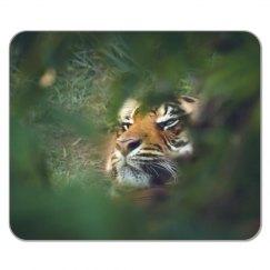 Tiger Pad
