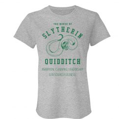 Slytherin Quidditch Fan