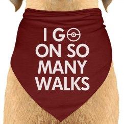 I Go On So Many Walks