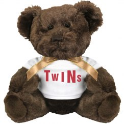 Twins Plush Bear