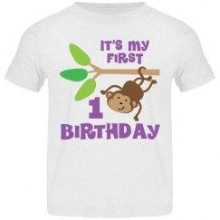 1st Birthday Monkey