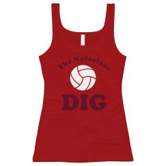 Volleyball DIG Team