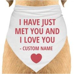 Dog Love Bandanna