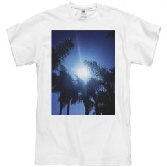 Palm trees & sun