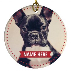 Custom Holiday Pet Photo Design