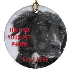 Custom Pet Designs