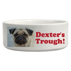 Dexter's Food Pic Upload