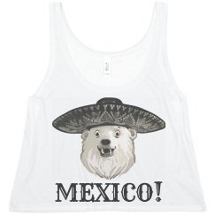 Off to Mexico (hopefully)