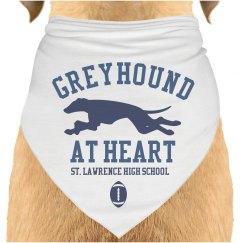Greyhound At Heart