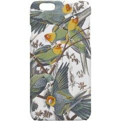 Carolina Parakeet iPhone 6 Case