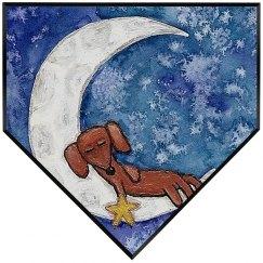 Dachshund on the Moon